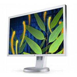 LCD 24″ EIZO EV2436W LED IPS DP DVI VGA 1920x1200
