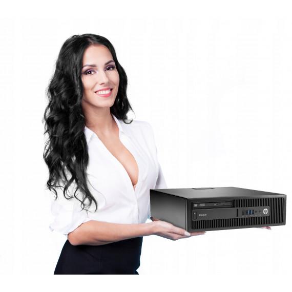 HP 800 G2 SFF DT i3-6100 4GB 500GB DVDRW WIN10PRO