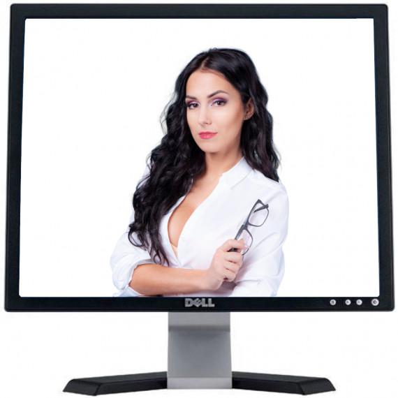 LCD 19 DELL E198 LED TN VGA 1280×1024 5:4